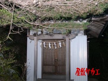 きつね神社13