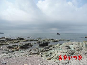 加茂青砂海岸3