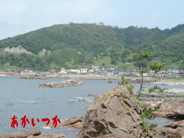加茂青砂海岸5
