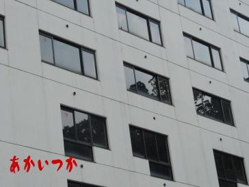 廃ホテルN6