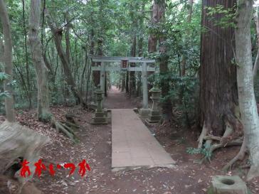 達磨神社(白幡神社)2