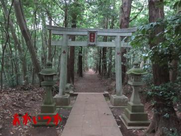 達磨神社(白幡神社)3