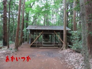 達磨神社(白幡神社)5