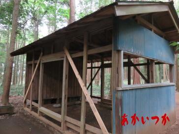 達磨神社(白幡神社)6