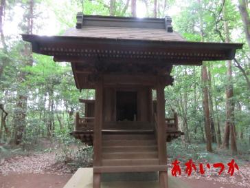 達磨神社(白幡神社)7