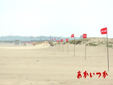 浜宿海岸3
