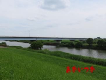金野井大橋