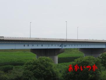 金野井大橋2
