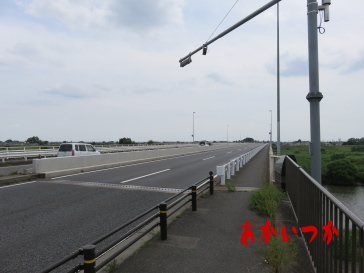 金野井大橋3