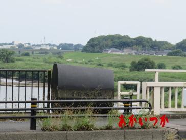 金野井大橋4