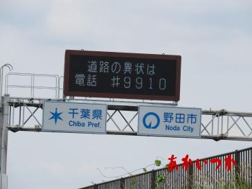 金野井大橋5