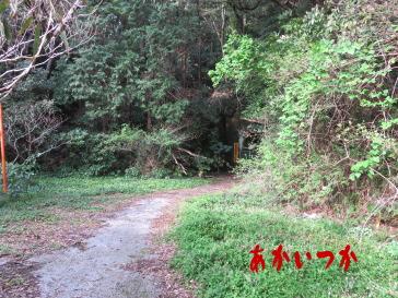 観音トンネル2