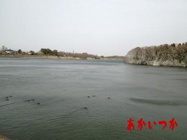 山倉ダム-1