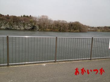 山倉ダム-3