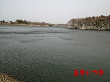 山倉ダム-4