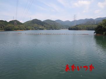畑貯水池6