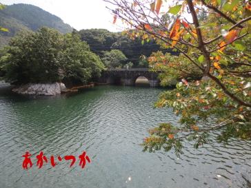 河内貯水池4