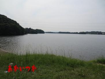 頓田貯水池2