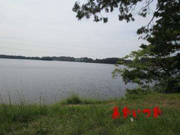 頓田貯水池3