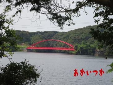 頓田貯水池4