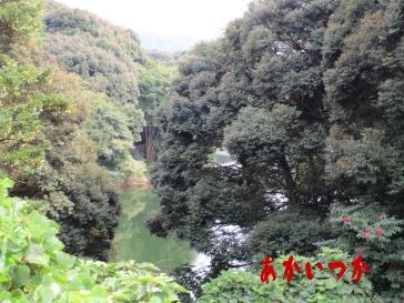 頓田貯水池5