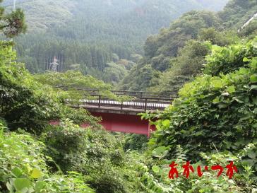 田人大橋6