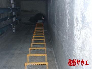 13・14トンネル屋敷サカエ11