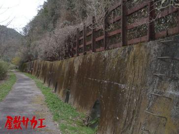 13・14トンネル屋敷サカエ6