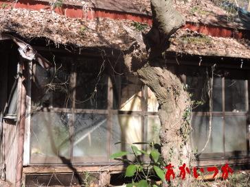 神の住む家5