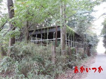 クリスタルハウス1