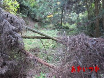 旧天神山トンネル3