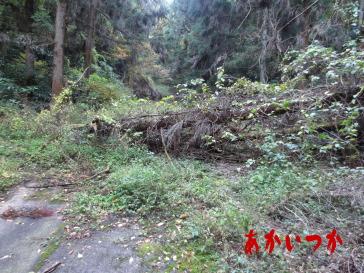 旧天神山トンネル4