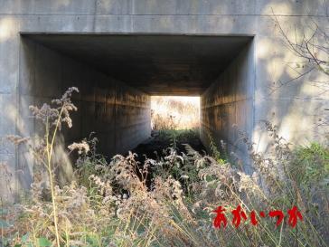 赤い橋(オレンジ橋)8