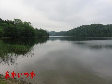 チミケップ湖5