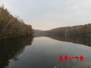 西岡水源池5