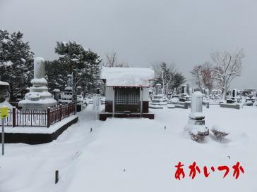 丘珠墓地2