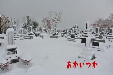 丘珠墓地4
