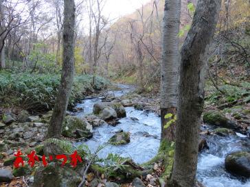 乙女の滝3