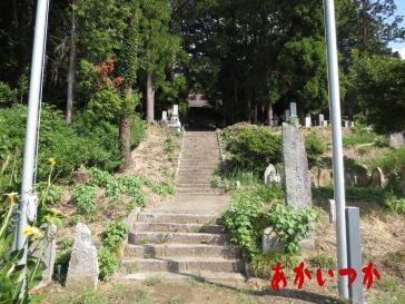廃寺Zの1