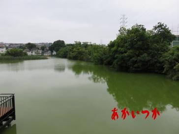 二ツ池公園3