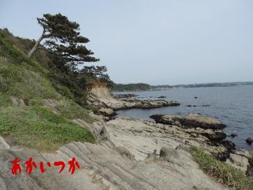 荒崎海岸3