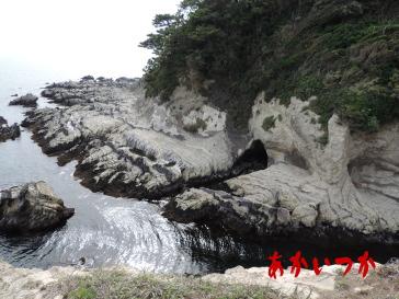 荒崎海岸5