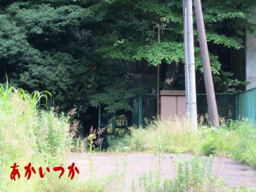 旧道正トンネル4