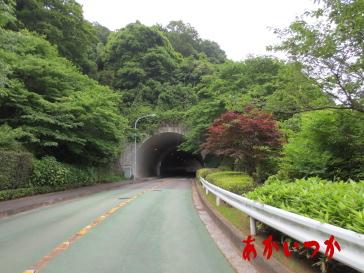 みず木トンネル