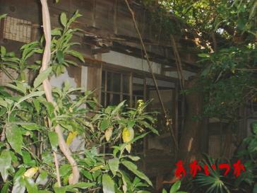 サザエさん家2