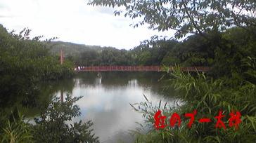 赤田公園1