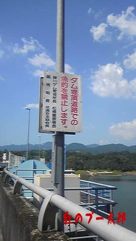 緑川ダム7