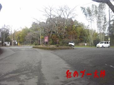 田原坂2紅のプー太郎