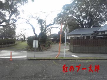 田原坂4紅のプー太郎