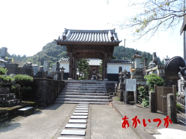 幽霊の掛け軸 永国寺10